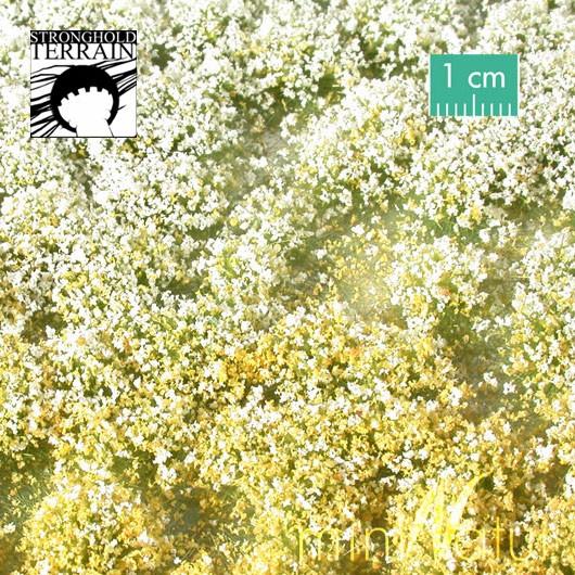 Blütenbüschel Frühling-0