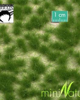 Gras Büschel Sommer-0