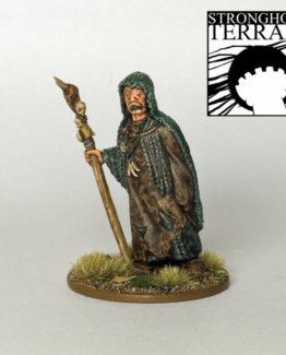 Seher (Heidnischer Priester)-0